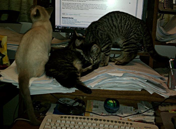 IMAG0358-all-three-on-desk