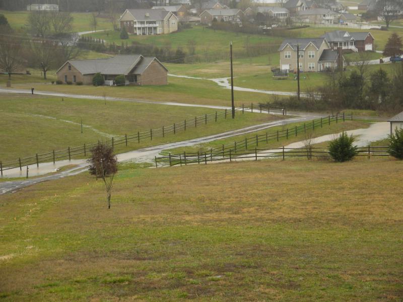 2020feb06-view-down-driveway