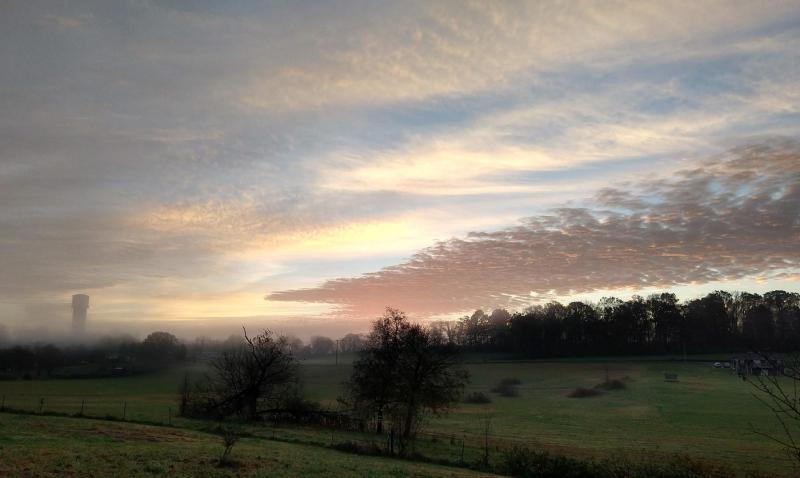 Dawn 2020nov14