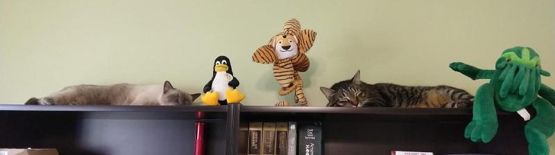 Bookcase guardians